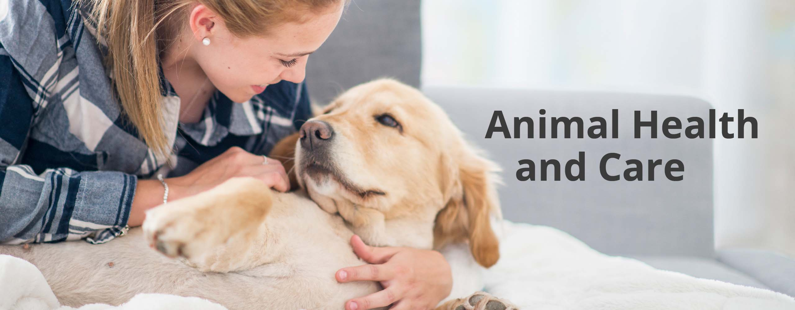 animal protection decision making based on aesthetic After the decision-making process, objective assessments should be made to   conditions and adequate protective and escape mechanisms for submissive  animals  space for group-housed animals should be based on individual  species.